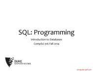 Tutorial SQL: Programming