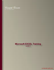 Tutorial Microsoft EXCEL Training Level 3